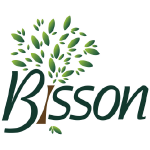 Bisson - Cogne World cup 2019