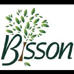 Bisson - Cogne World cup 2019